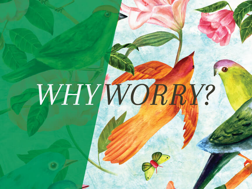 Why Worry? Week 5